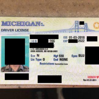 MI FAKE ID