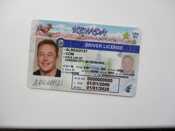 Nevada fake id